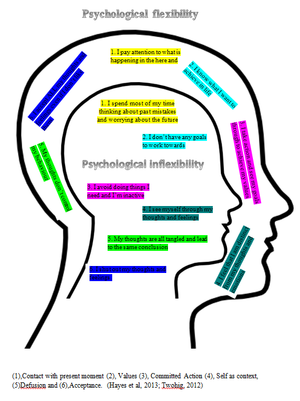 Forensic psychotherapy - Image: ACT Psychological flexibility vs inflexibility
