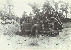 4th Battalion (Australia) - Troops from the 4th Battalion using a captured Japanese staff car on patrol, Hansa Bay, June 1944.