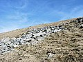 A boulder field on the NW slope of Y Garn - geograph.org.uk - 437233.jpg