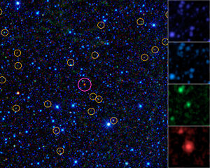 Hot, dust-obscured galaxies - A hot, dust-obscured galaxy seen by WISE