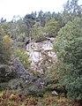 A roadside crag - geograph.org.uk - 1550850.jpg