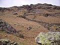 Above Little Gatesgarthdale - geograph.org.uk - 145008.jpg