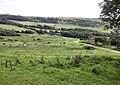 Above Tyneham - geograph.org.uk - 1521735.jpg