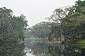 Acharya Jagadish Chandra Bose Indian Botanic Garden - Howrah 2011-02-20 1630.JPG