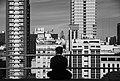 Admirando Buenos Aires.jpg
