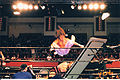 Air Sabu - Rhyno's Head About to go Through Table.jpg