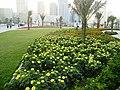 Al- Majas, Sharjah - panoramio (5).jpg