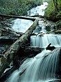 Alarka falls nc.jpg