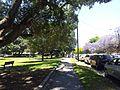 Alexandria NSW 2015, Australia - panoramio (219).jpg