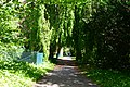 Alnarps Park Grönt Väg.jpg