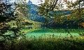 Alpsee Nr. 5.jpg