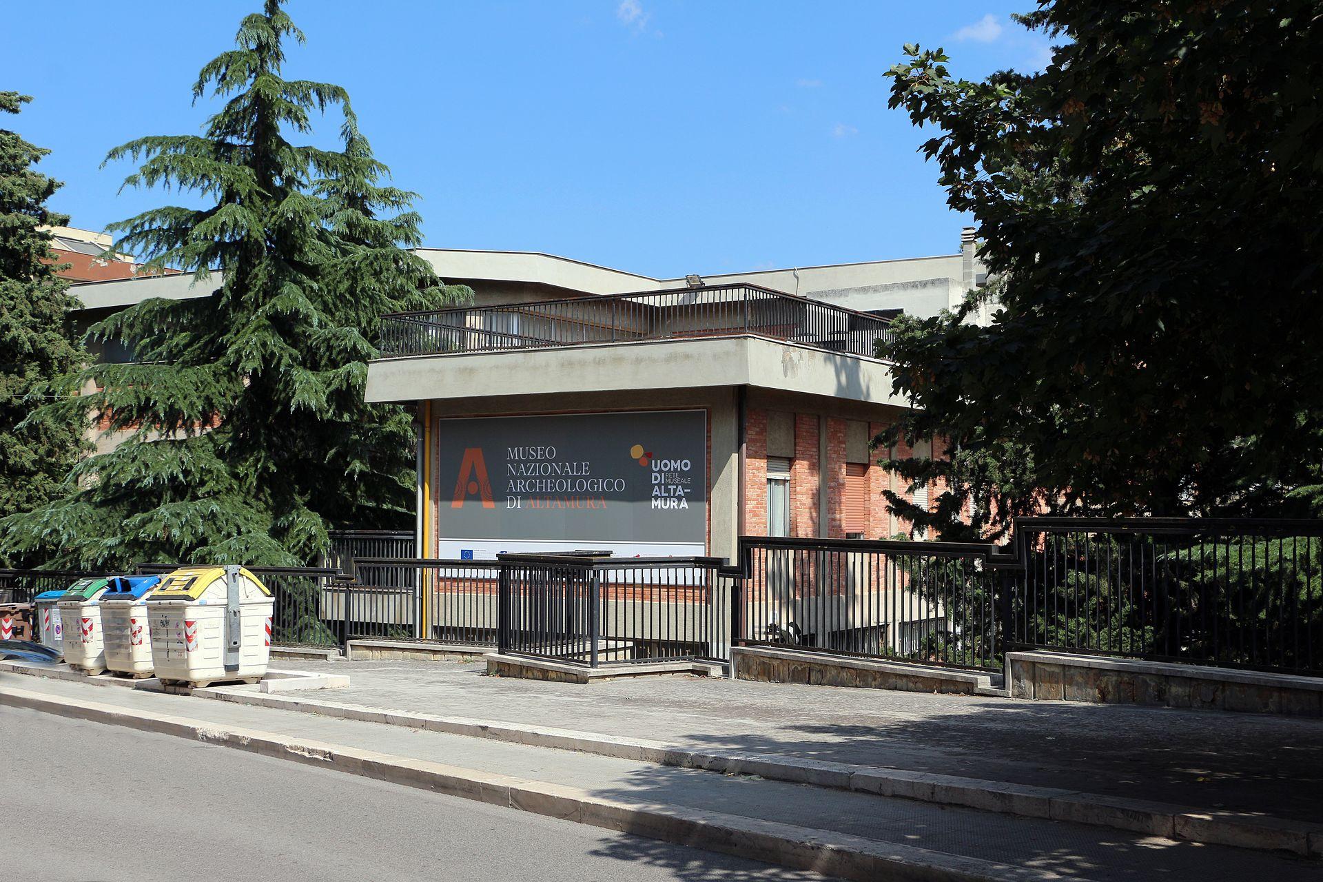 Altamura, museo archeologico nazionale.jpg