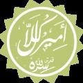 Amir Kullal.png