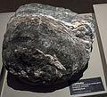 Amphibolite, Otago Museum, 2016-01-29.jpg