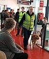 An Custaim na hEireann-Irish Customs sniffer dog team operating at Terminal 1 - geograph.org.uk - 2076651.jpg