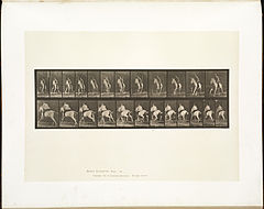 Animal locomotion. Plate 630 (Boston Public Library).jpg