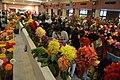 Annual Flower Show - H B Kanoi Exhibition Hall - Agri-Horticultural Society of India - Alipore - Kolkata 2013-02-10 4911.JPG