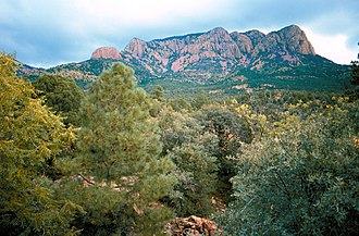 Cibola National Forest - The Apache Kid Wilderness in the Cibola National Forest. Photo: US Forest Service.