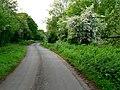 Approaching Bursey Lane Ends - geograph.org.uk - 185404.jpg