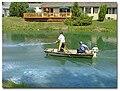 Aquaticplantbook algicide.jpg