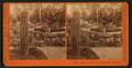 Arizona Garden, Hotel Del Monte, Monterey, by Watkins, Carleton E., 1829-1916.png