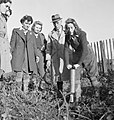 Arrest That Rat- the work of the Women's Land Army Rat Catchers, Sussex, 1942 D11222.jpg