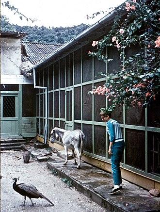 Asa Wright Nature Centre - Image: Asa Wright's home 1967