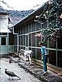 Asa Wright's home 1967.jpg