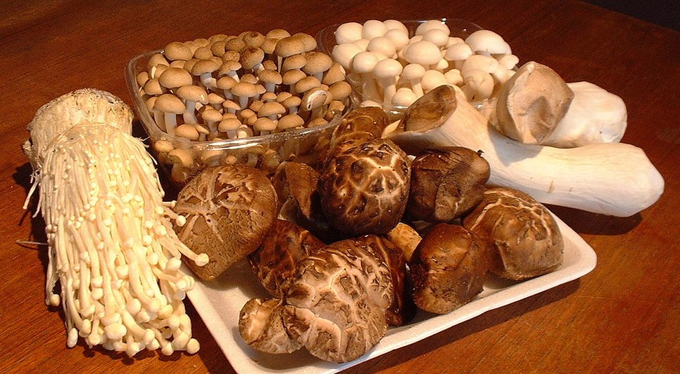 Asian mushrooms