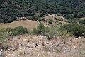 Atajate, 29494, Málaga, Spain - panoramio (1).jpg