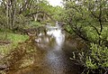 Atascadero Creek (25359535254).jpg