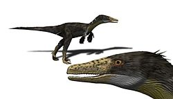meaning of dromaeosauridae