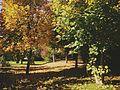 Autumn in Kleinburg, Ontario (15968912416).jpg