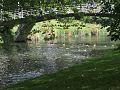 Avon river.jpg