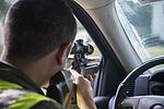 BASH program decreases bird strikes, makes air space safer for pilots 160713-F-XF990-139.jpg