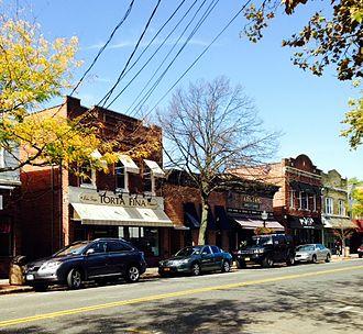 Babylon (village), New York - Various businesses and restaurants in Babylon Village