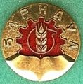 Badge Барнаул.jpg
