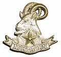 Badge of Northern Light Infantry.jpg