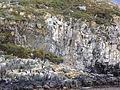 Bahía Ushuaia 260.JPG