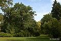 Barwy jesieni w Parku Szczytnickim - w Parku Szczytnickim - autumn in the park - panoramio.jpg