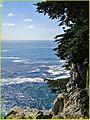 Beach, Chris 2013b (12323702244).jpg