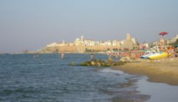 Beach of Termoli.jpg