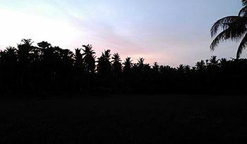 Beauty of village.jpg