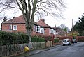 Beech Avenue - geograph.org.uk - 631291.jpg