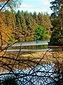 Beecraigs Loch - geograph.org.uk - 346897.jpg