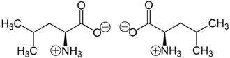 Leucine - (S)-Leucine (or L-leucine), left; (R)-leucine (or D-leucine), right, in zwitterionic form at neutral pH