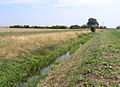 Billingborough Lode, Billingborough Fen, Lincs - geograph.org.uk - 215180.jpg
