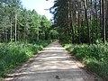 Birštono sen., Lithuania - panoramio (65).jpg
