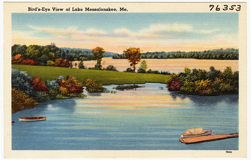 File:Bird's-eye view of Lake Messalonskee, Me (76353).jpg