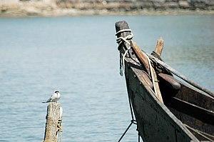 BirdNBoatHelsinki.jpg